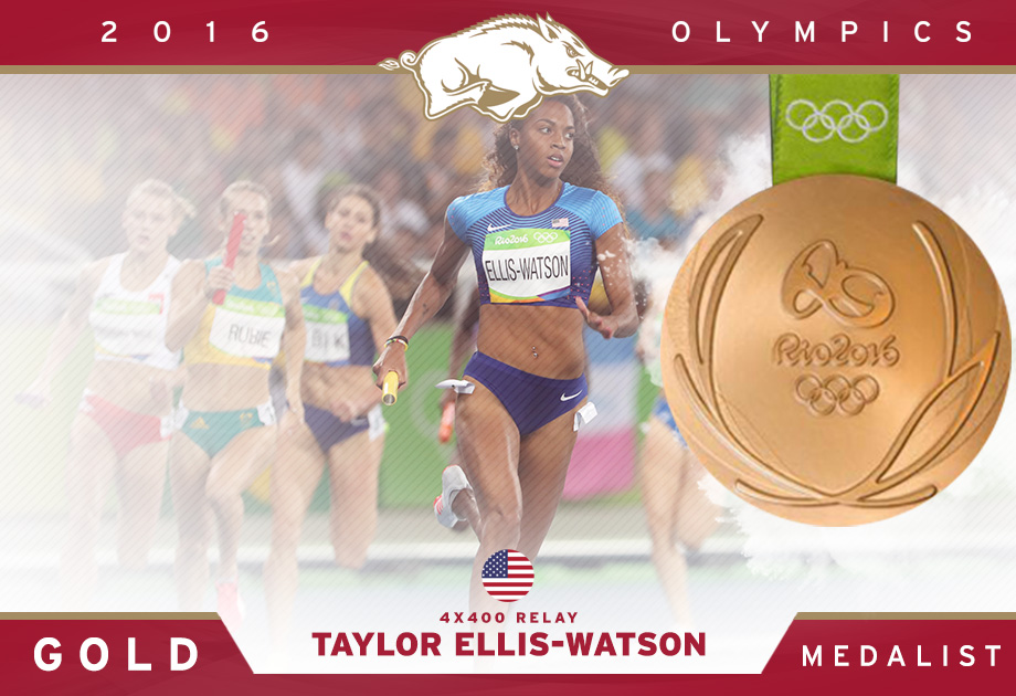 TEW Rio 4x4 Gold