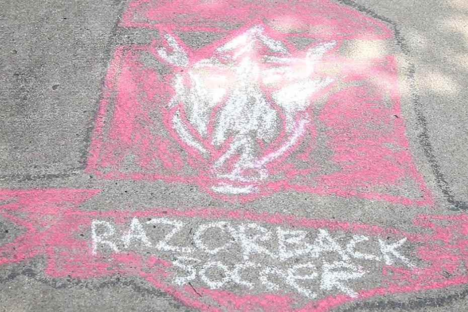 Razorback Video