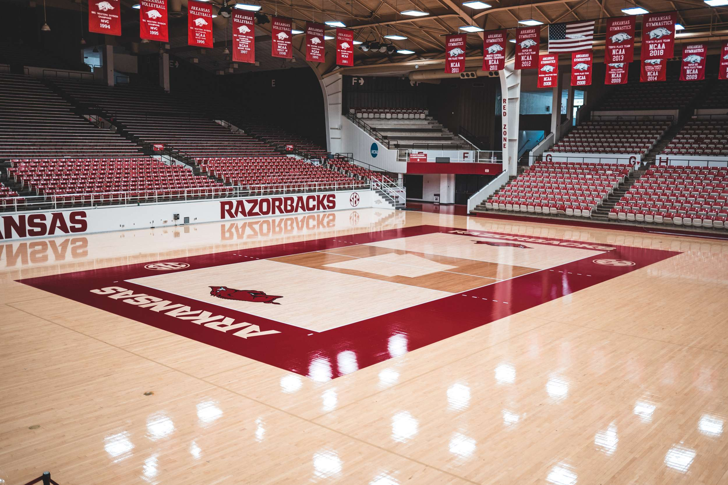 Hear from the Hogs: Volleyball on the Eve of First Scrimmage