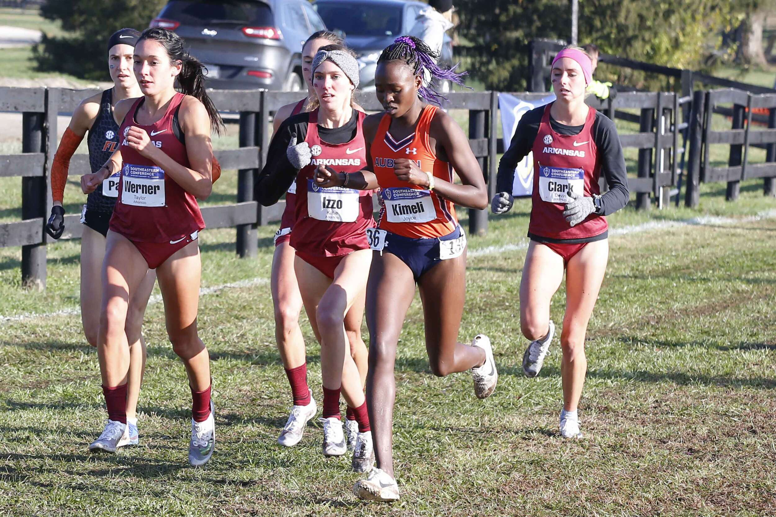 Top-Ranked Razorbacks Set for NCAA Championships