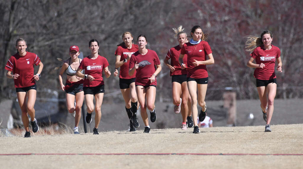 NCAA Championships in cross country next stage for Razorbacks